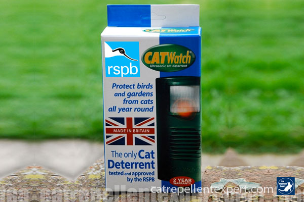 Effective cat repellent garden